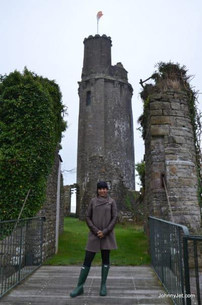 Ballyfin Ireland 2013 -045