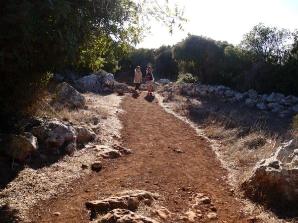Hiking on Mount Carmel