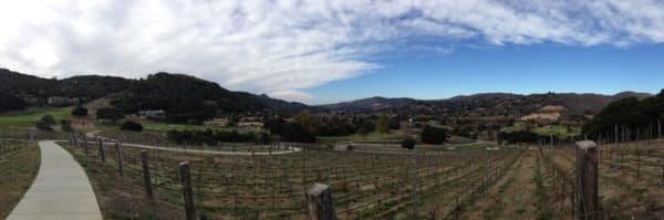 Vineyards at Carmel Valley Ranch