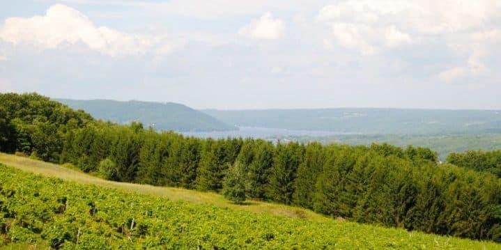 Keuka Lake's beautiful wine country, chase sapphire preferred ink business preferred