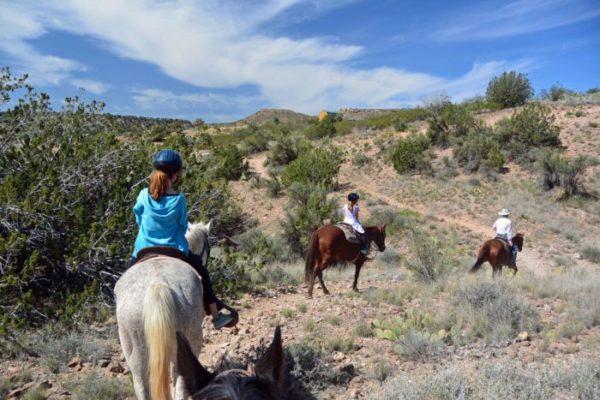 On the Desert Trail