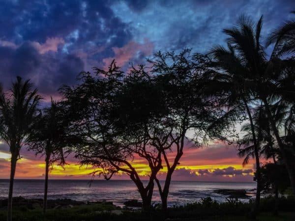 Four Seasons Oahu Ko Olina Hawaii June 2016-046