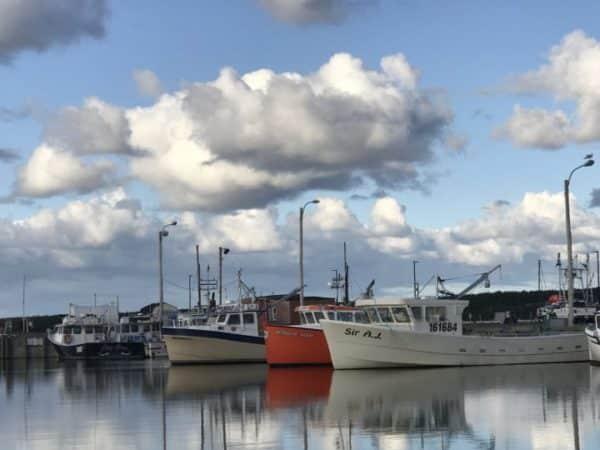 Harbor at Chéticamp, Cape Breton
