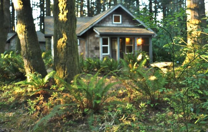 Cottage at WildSpring Guest Habitat (Credit: Bill Rockwell)