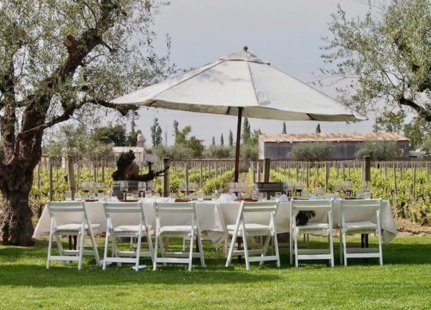 Lunch beside vineyards at Bodega Tapiz