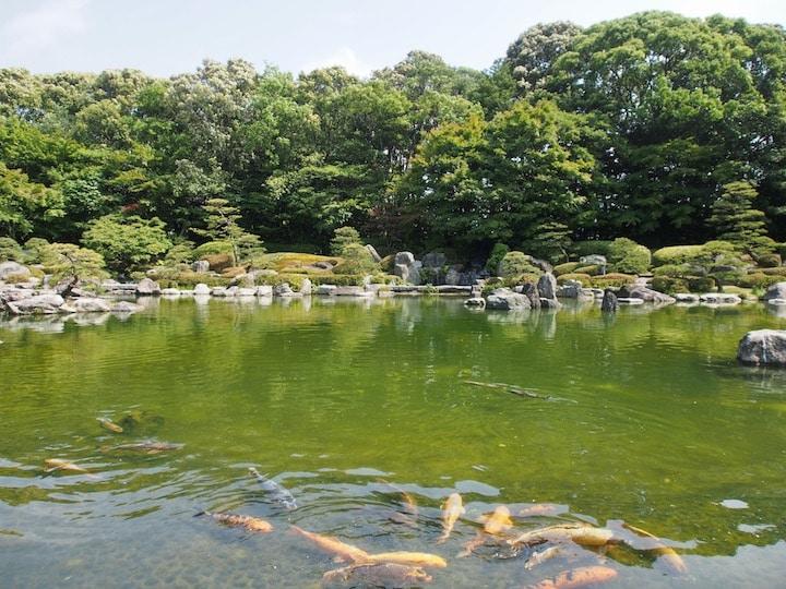 In Ohori Park