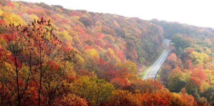 cheap car Insurance Companies for North Carolina